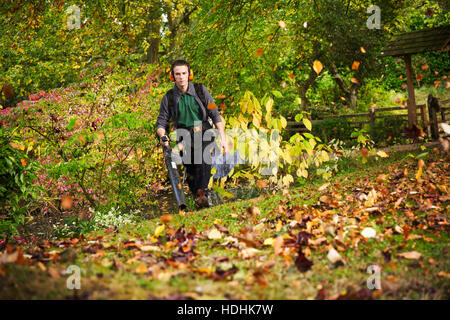 A gardener using a leaf blower to clear up autumn leaves in a garden. - Stock Photo